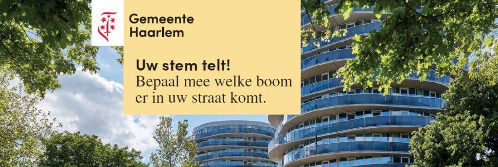 Stem bomen in Schalkwijk